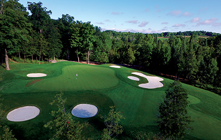 Image result for tangle creek golf